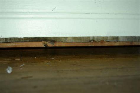 How do I air seal the gap between hardwood floor and wall