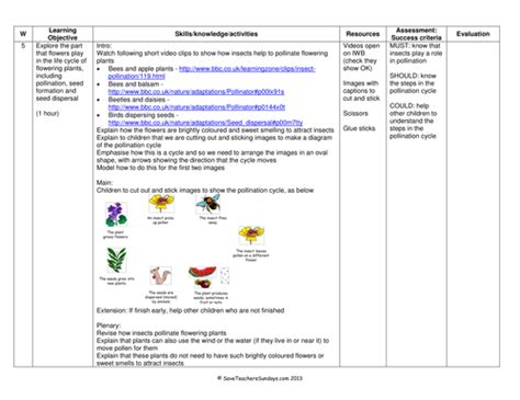 Pollination Worksheet Ks2 by Cycle Of Flowering Plants Plan And Worksheet By