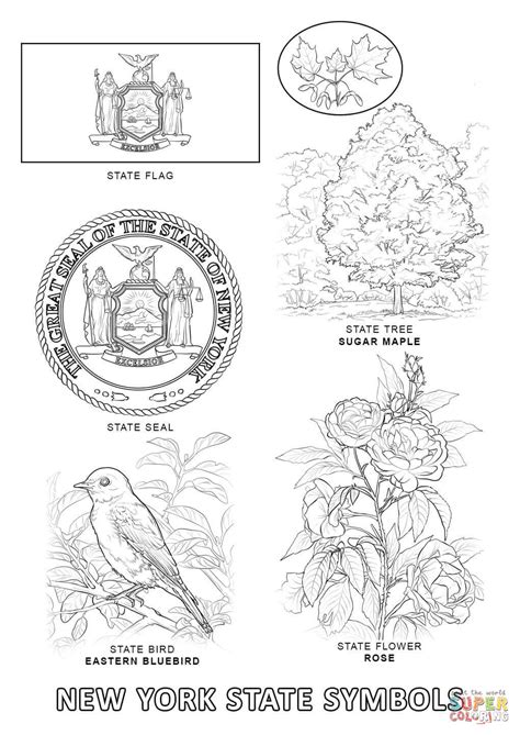 new york state symbols coloring page free printable