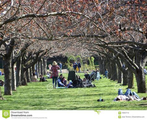 Garden City Ny Part Time Botanic Garden April 2016 Part 3 13 Editorial