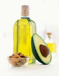 healthy essential fats lipids eat the begin within