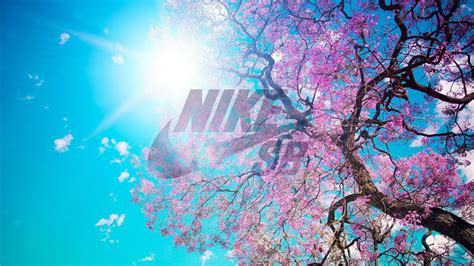 wallpaper to laptop nike hd wallpaper free download for desktop pc laptop
