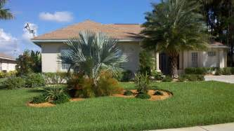 landscaping ideas front yard palm trees home design ideas