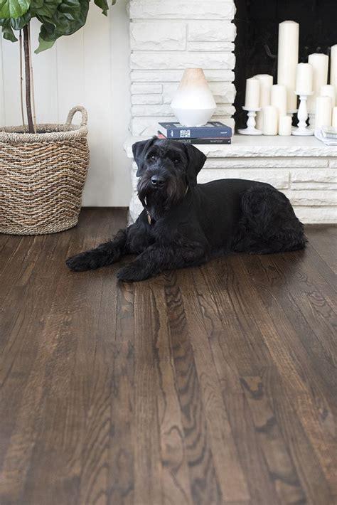 wood floor color ideas 25 best ideas about hardwood floor refinishing on