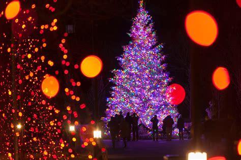 christmas light show near philadelphia a longwood christmas is best winter lights display near