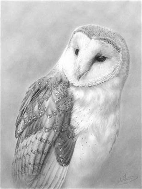 Spectrum Framing Barn Owl Drawing