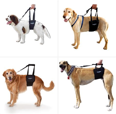 support dogs gingerlead support harness harness