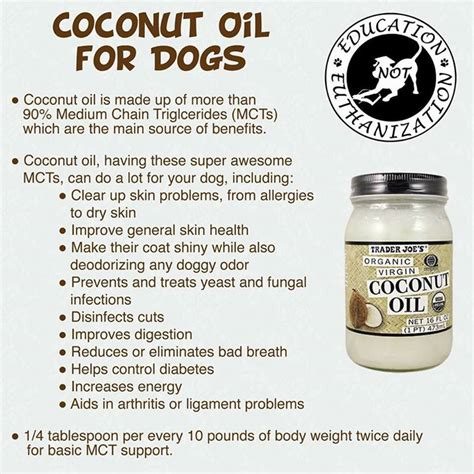is coconut safe for dogs coconut for dogs not just for my pet source