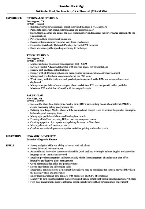 simple resume profile exles enterprise risk management resume yang simple