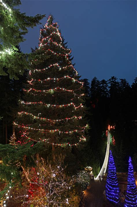 canyon lights at the capilano suspension bridge outdoor