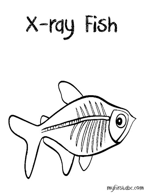 x ray fish coloring page my first abc