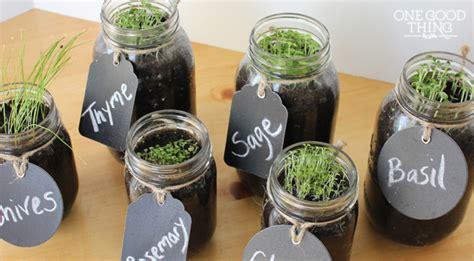 mason jar herb garden herbs info