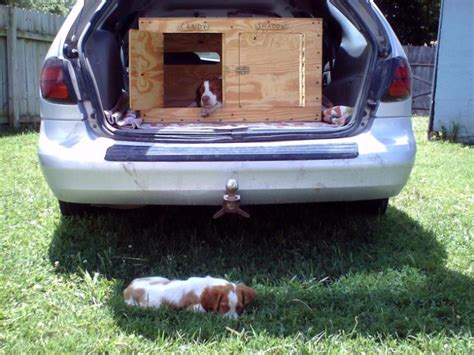 dog box for truck bed dog box for truck bed amour collection small dog beds dog