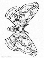 mini butterfly coloring pages printable butterfly coloring pages