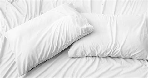 white bed pillows hypoallergenic pillows your allergy free sleep awaits