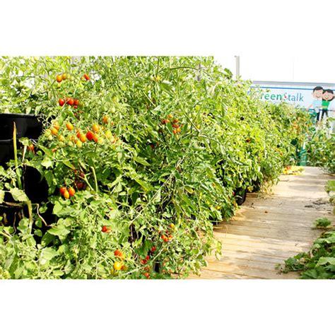 vertical garden stackable gardening vegetables