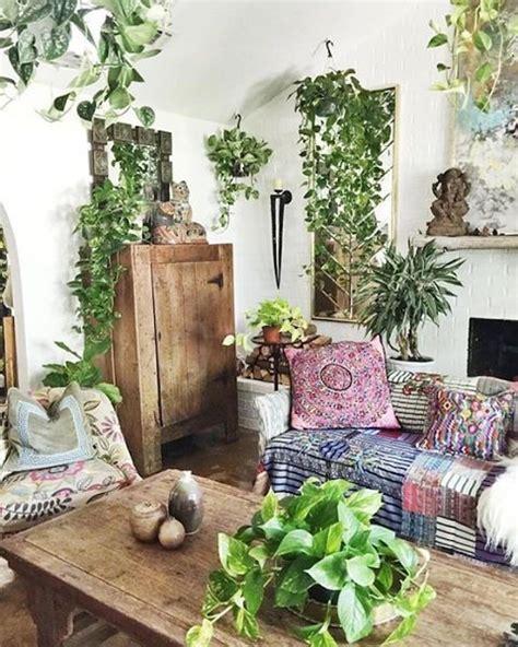 pianta soggiorno piante soggiorno salotto