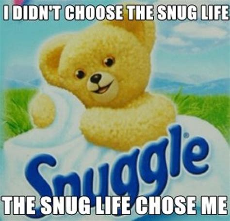 Snuggle Bear Meme - the blemished lens