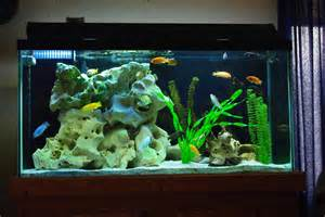 Decorating Ideas For Fish Tank Decorating Your Fish Tank With Beautiful Design Ideas