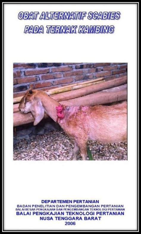 Obat Scabies leaflet obat alternatif scabies pada ternak kambing