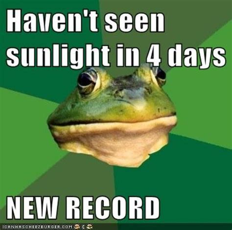 Foul Bachelor Frog Meme - image 228857 foul bachelor frog know your meme