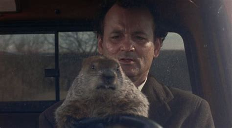 groundhog day with bill murray 17 repeatable quotes from groundhog day mnn