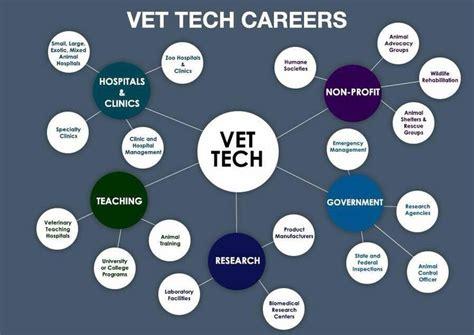 so many things a vet tech can do vet technician tech