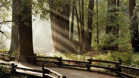 imagenes increibles en hd incre 237 bles paisajes en hd lenticom