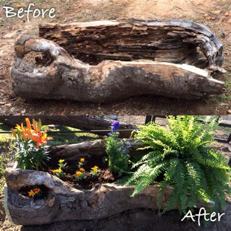 Tree Log Flower Planter by Tree Stumps And Logs Can Easily Be Turned Into