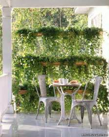 Pvc Trellis Systems Best Pvc Pipe Ideas For Outdoor Living And Gardening