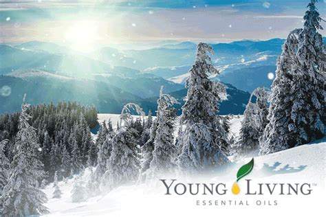 merry christmas young living essential oils