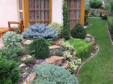 steingarten pflanzenauswahl steingarten anlegen welche pflanzenarten sind am besten