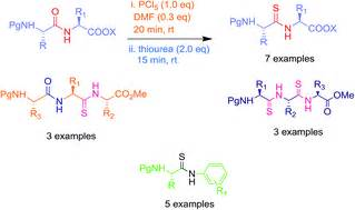 n supplementary reagent l thionation of di and tripeptides employing thiourea as a