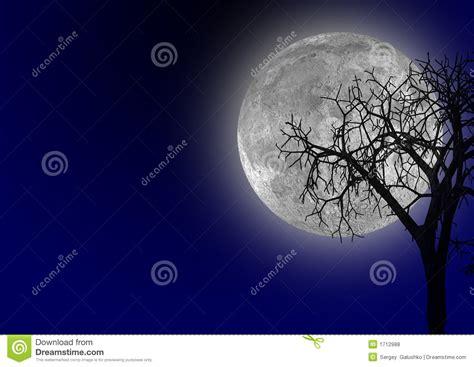 moon royalty free stock photos image 1712988