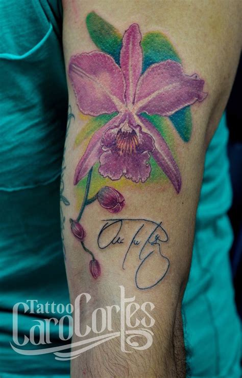 cattleya tattoo designs 16 best columbia cattleya flower images on