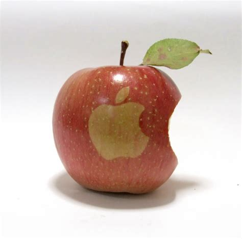 apple to apple apple fanatic cultivated real apples with apple logo