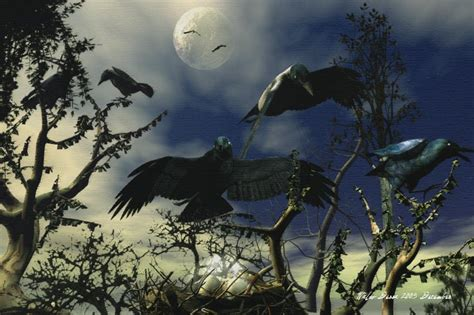 A Murder Of Crows a murder of crows paganspace net the social network for