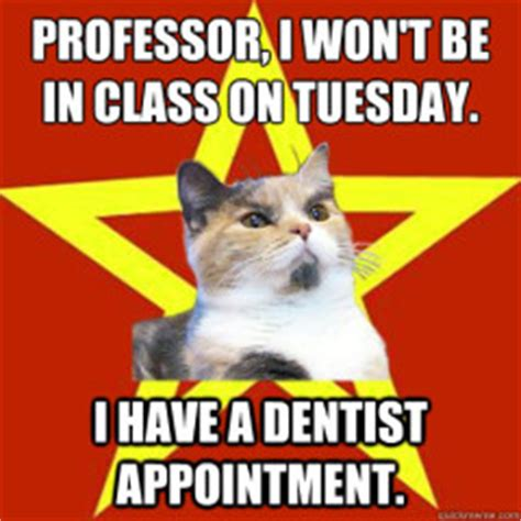 Professor Cat Meme - funny cat memes archives page 427 of 983 cat planet