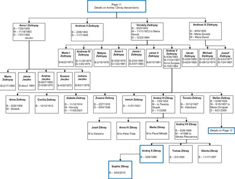 visio tree zitnay family tree visio 2007