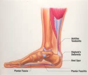 when to see the podiatrist dr kevin s gavin foot