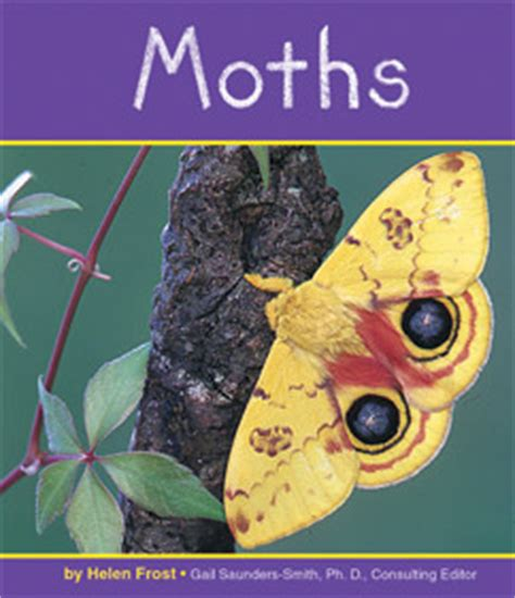 moth and butterfly books for science books for