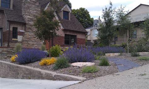 Landscape Design Drought Tolerant Plants Xeroscape Drought Tolerant Landscape Design