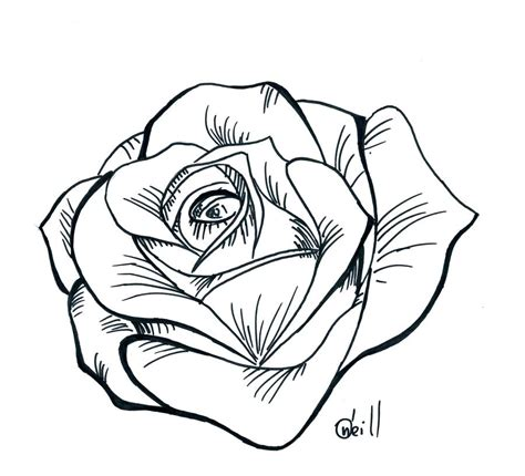 rose tattoo patterns free drawing stencil at getdrawings free for