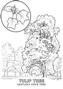 kentucky map coloring page map of kentucky coloring page free printable coloring pages