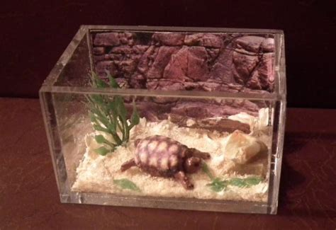 Handmade Tortoise Table - 17 best images about dollhouse pets on pets