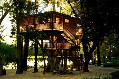 treehouse homes for sale building a livable tree house for sale best house design