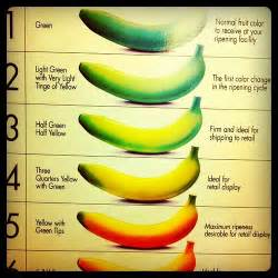 what color is a banana official monte banana color chart featuring futura
