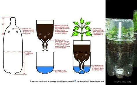 orto invernale in vaso oltre 1000 idee su giardino a bottiglia su