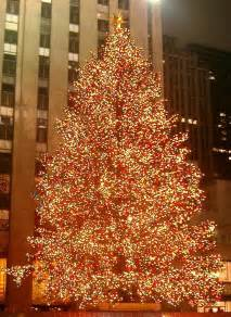 rockefeller center christmas tree 2014 5 things to know