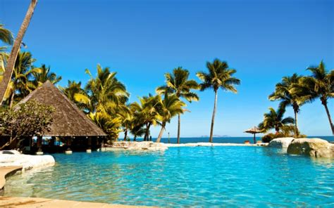 water ocean sun summer tropical fiji palm trees